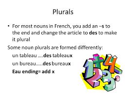 bureau plural indefinite articles plural of nouns ppt télécharger