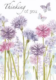 thinking of you flowers sympathy card thinking of you flowers butterflies thinking of