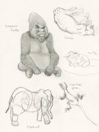boursorama si鑒e social kristin steusloff portfolio zoo study