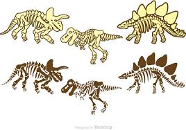 dinosaur bones vectors pack download free vector art stock