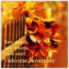 best 25 welcome november ideas on hello november