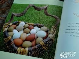 Guide To Raising Backyard Chickens by Guide To Backyard Chickens Review U2013 Garden Up Green