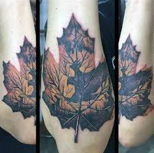 60 leaf designs for the delicate stages of