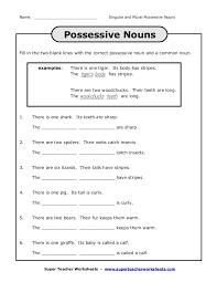 plural and singular possessive nouns worksheets free worksheets