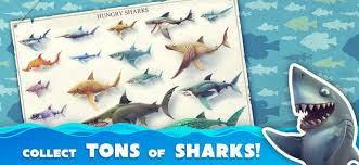 hungry shark evolution hacked apk hungry shark world on the app store