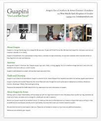 Best Resume Writing Service Reviews Awareness Dialogue And Process Essays On Gestalt Therapy An