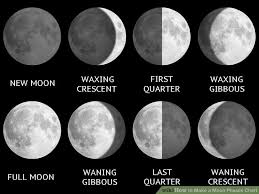 moon phases thinglink