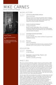 Financial Advisor Resume Examples by Real Estate Resume Samples Visualcv Resume Samples Database