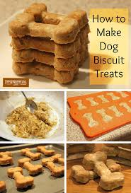 recipes for dog treats doggie treats for your favorite pooch recipes