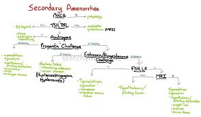 Challenge Causes Amenorrhea Sketchy Medicine