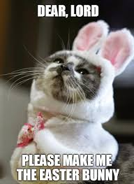 Mere Cat Meme - grumpy cat easter cat lovers