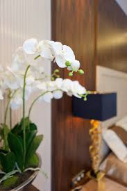 art deco home decoration inspiration beautiful white orchid