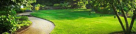 directory of landscaping companies in south africa