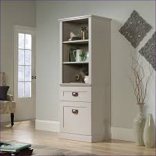 Office Wall Cabinets With Doors Furniture Fabulous 24 Inch Tall Cabinet Tall Cupboard With