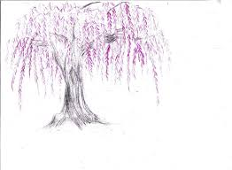 weeping cherry color sketch by kosenwing on deviantart
