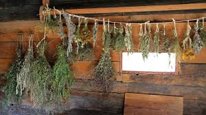 6 ways to display dried herbs in your fall home décor u2013 herbal academy