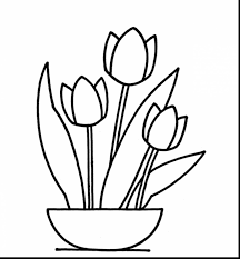 excellent printable tulips flower coloring pages with tulip