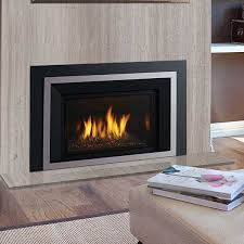 Regency Fireplace Inserts by Gas Fireplace Inserts Evenings Delight