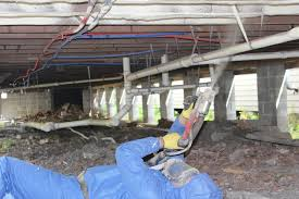 Basement Humidity - basement best humidity levels to prevent mold pertaining to what