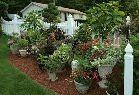 Potted Plant Ideas For Patio by Download Patio Planting Garden Design
