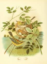 feed or foes livestock can be trained to eat the nuisance plants the nests and eggs of birds of the united states by thomas g gentry
