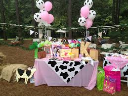 Western Theme Party Decorations Cowgirl Party Decorations And Centerpieces The Balloons