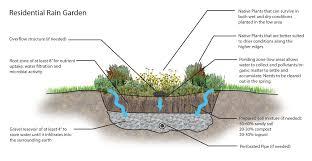 native indiana plants rain gardens