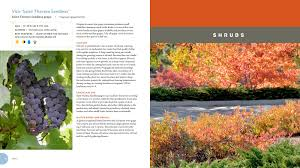 plants native to wisconsin plant selection color wheel u2014 timber press