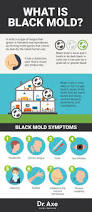 8 signs you need a black mold detox dr axe health problems and