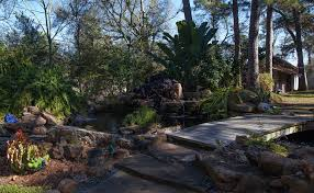garden conservancy houston tx open day u2013 peckerwood garden