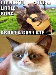 Smiling Cat Meme - jimmyfungus com the best of grumpy cat the best grumpy cat memes