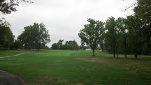 msga single golfer in cart page 2