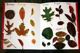 leaf art for preschoolers autumn and fall leaf art for kids
