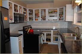 Small Home Design Videos Kitchen Cool Kitchen Cabinets Without Doors Small Home