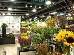 flower shops in miami top floral shops cbs miami