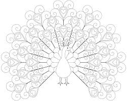 feather coloring pages peacock color page printable peacock coloring