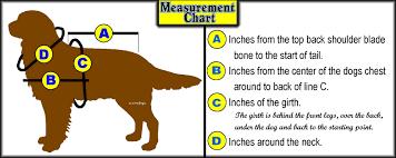 measurement u0026 color charts