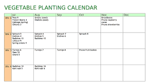 Vegetable Garden Planting Calendar by Allotment Heaven Vegetable Planting Calendar