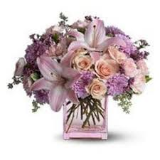 flower delivery cincinnati flower delivery 4 all florists 2692 rd cincinnati oh