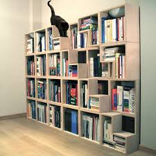 decorations contemporary idea in bookshelf design that has two
