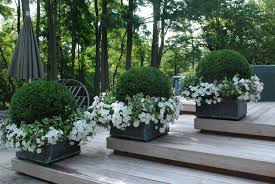 home design french garden design spring with flowers and potted