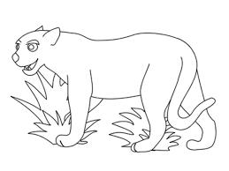 animal outlines to color www mindsandvines com