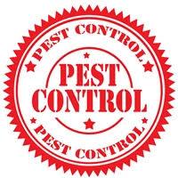 extermination best pest canby oregon