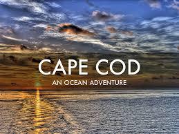 cape cod an ocean adventure by tricia johnson