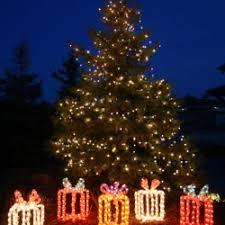 san antonio exterior tree wrapping with mini lights