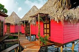 bird island belize airbnb rent a private island for less than 500 a night simplemost