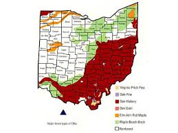Ohio forest images Ohio 39 s regions here are some maps facts and pictures of ohio 39 s jpg