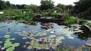 Kansas City Botanical Gardens by Wondrous Waterlilies Powell Gardens Kansas City U0027s Botanical Garden