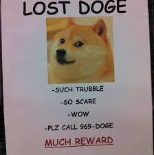 Original Doge Meme - drag to resize or shift drag to move memes pinterest doge