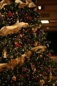 accessories captivating decorating ideas of christmas trees using